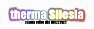 therma-silesia-logo
