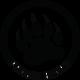 prague-bears-logo